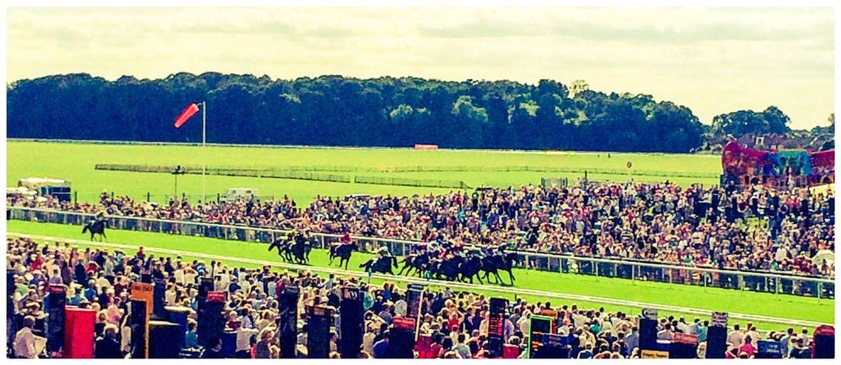York Races York Racecourse