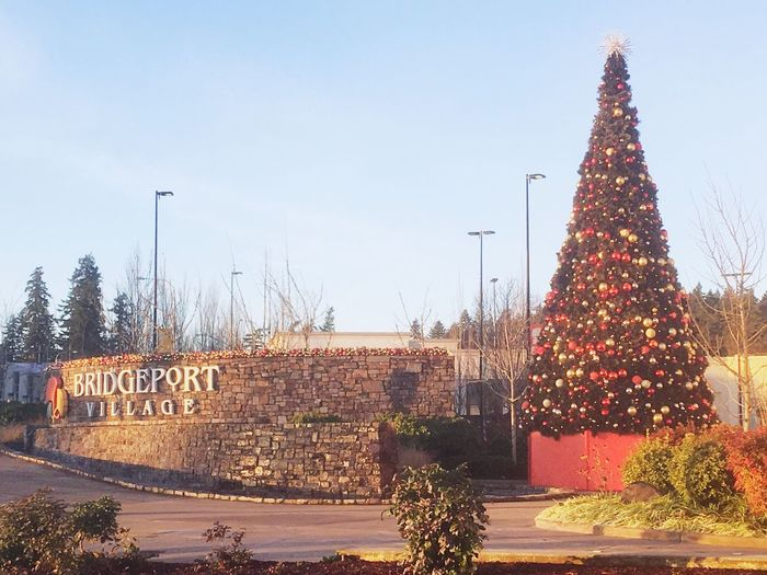 Bridgeport village shopping center Christmas tree Lake Oswego, Oregon Tualatin Christmas Shopping