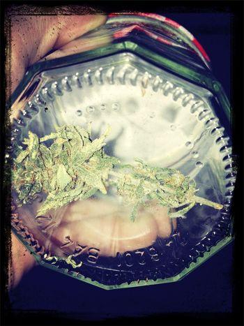thx friends ! Smoking Weed Weed Smoking High