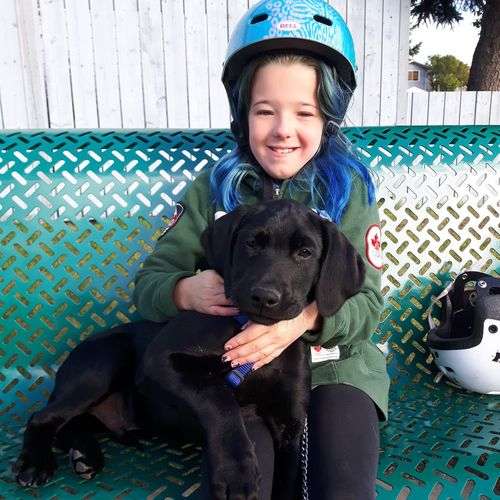 Puppy Love Bench Girl With Her Dog Girl Bike Helmet Friendship Pets Child Portrait Childhood Sitting Togetherness Dog Retriever Labrador Retriever Puppy Canine Pet Owner Black Labrador