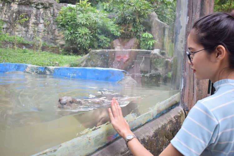 Lutra Lutra Otter Zoo Adult Eyeglasses  Genus Lutra Lutraki Mammal Nature One Animal One Person Otters Outdoors People Real People Water Women Young Adult Young Women Zoo Animals  Zoology Zoophotography