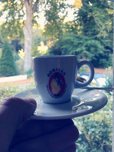 Espresso Gorilla Good Morning Kaffee Gorilla Espresso