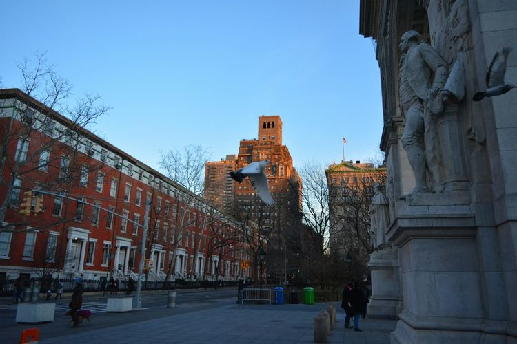 Washington Square Park Enjoying Life Getting Inspired Being A Tourist Taking Photos Manhattan New York City