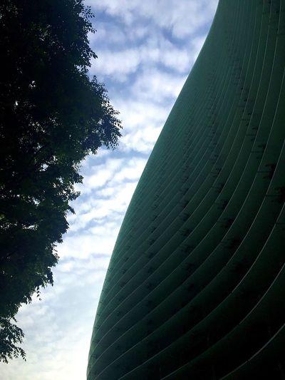 Thenationalartcentertokyo Building Sky Clouds Tree Sunny Day Roppongi Tokyo The Architect - 2016 EyeEm Awards 国立新美術館