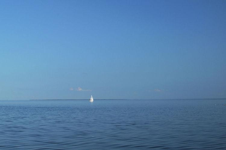 White Sail on