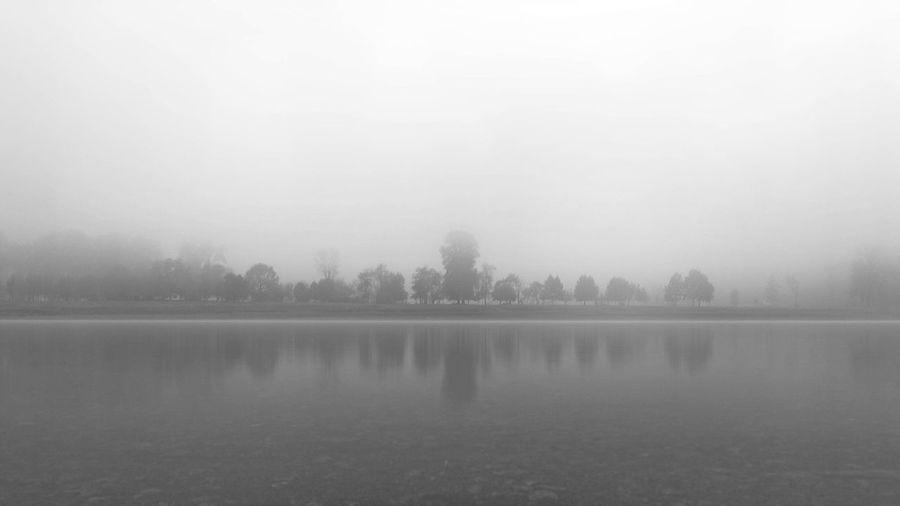 fog Tree Water Dawn Fog Winter Lake Cold Temperature Autumn Reflection Beauty Foggy Mist Bare Tree Woods Reflection Lake Sunrise - Dawn Idyllic Lone