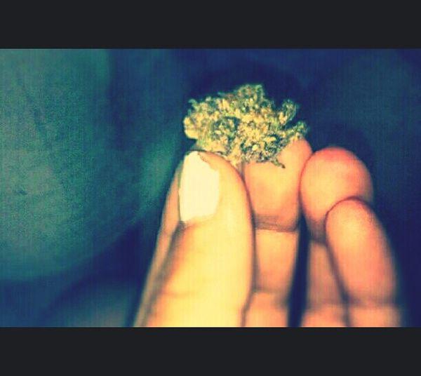 marijuana #SummerTime