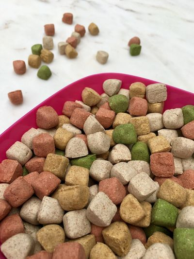 Close-up of dog food in container on flooring