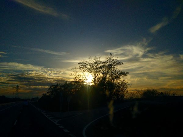 Tree Sunset Car Nature No People Sky Outdoors Road Scenics Landscape Beauty In Nature Tree Area Day