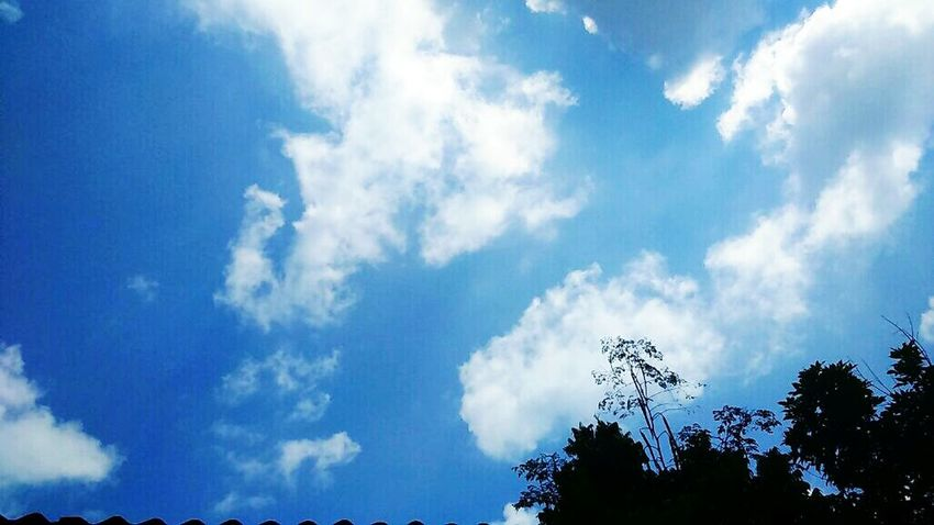 Clouds for the day ⛅ ☁⛅ Taking Photos Sky And Clouds
