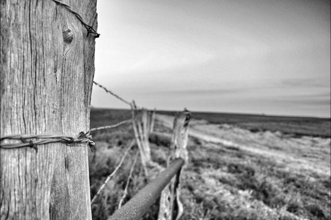 Blackandwhite Fencepost Friday EyeAmRuralAmerica Bw_collection