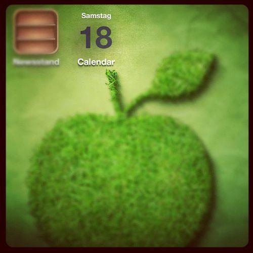 Nice Calendar icon. #SpringboardError Springboarderror