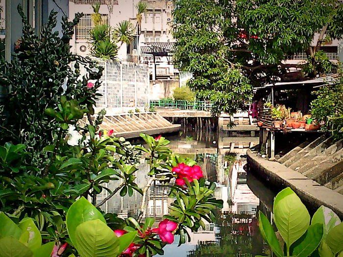 Klong Sarn (canal ), Bangkok thailand. Open Edit. Eyeem Gallery Taking Photos.