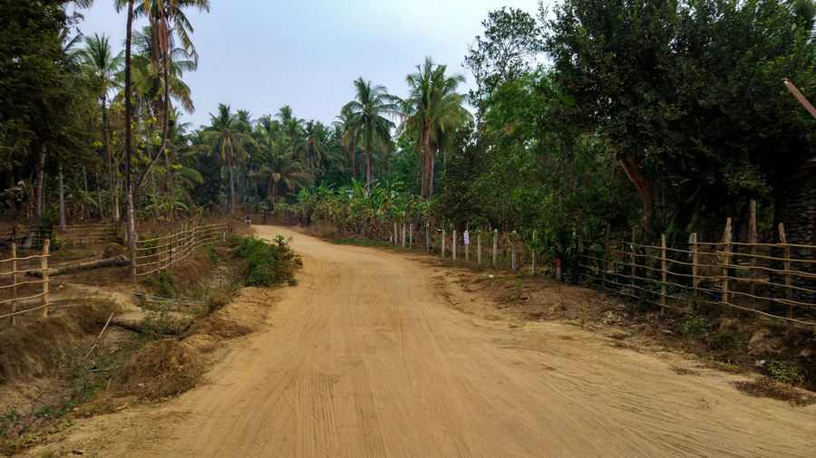 Dirt road amidst trees in forest against sky