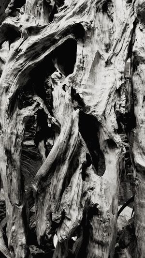 Thank god life's unlike this complex, creased and full of darkness wooden block. Lifeissimple WoodIsComplex Abstract Close Up Wooden Texture Texture Hollow Tree Blackandwhite Complexity Complex