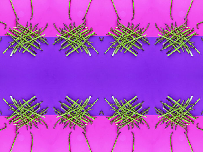 Pattern No People Backgrounds Indoors  Full Frame Blue Directly Above Pink Color Digital Composite Green Color Repetition Symmetry Colored Background Winter Purple Abstract Nature Creativity Side By Side Floral Pattern Blue Background