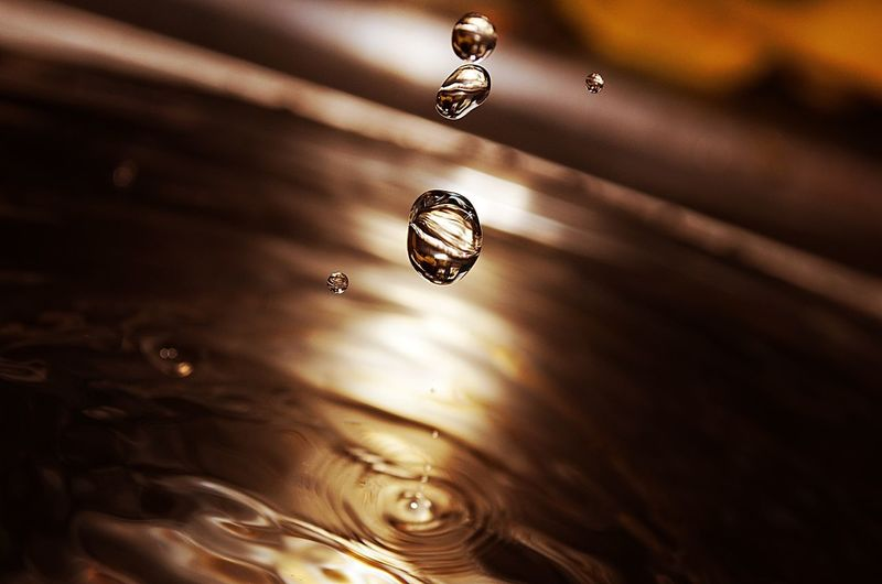 Close-up of water drop