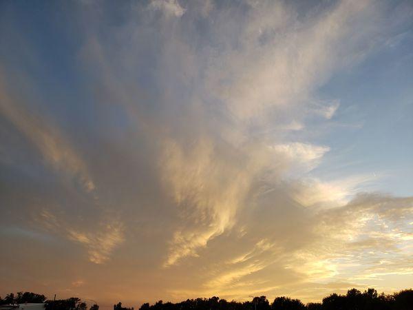 Tree Sunset Backgrounds Blue Dramatic Sky Sky Cloud - Sky
