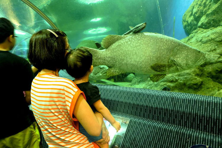 People in fish tank at aquarium