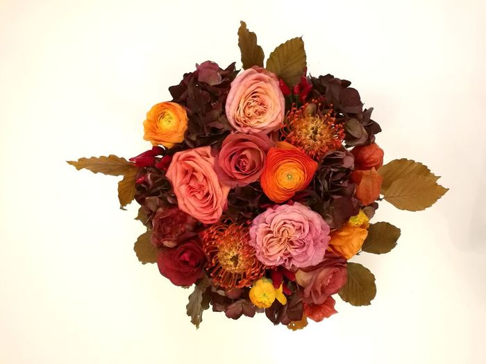 Flower Multi Colored Close-up Day No People Flowers Flower Head Nature Beauty In Nature Fall Fall Colors Autumn Autumn Colors Bouquet Of Flowers Roses
