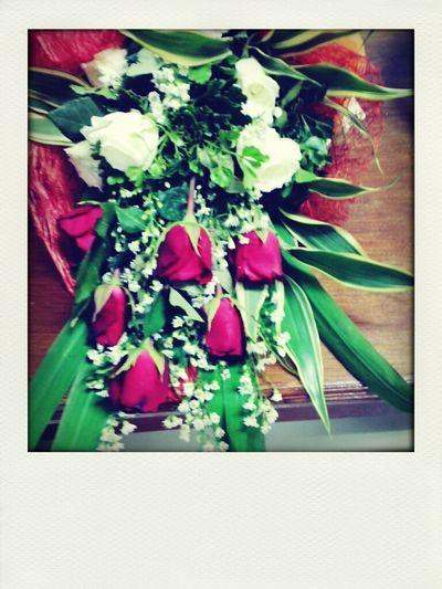 Flowers =))