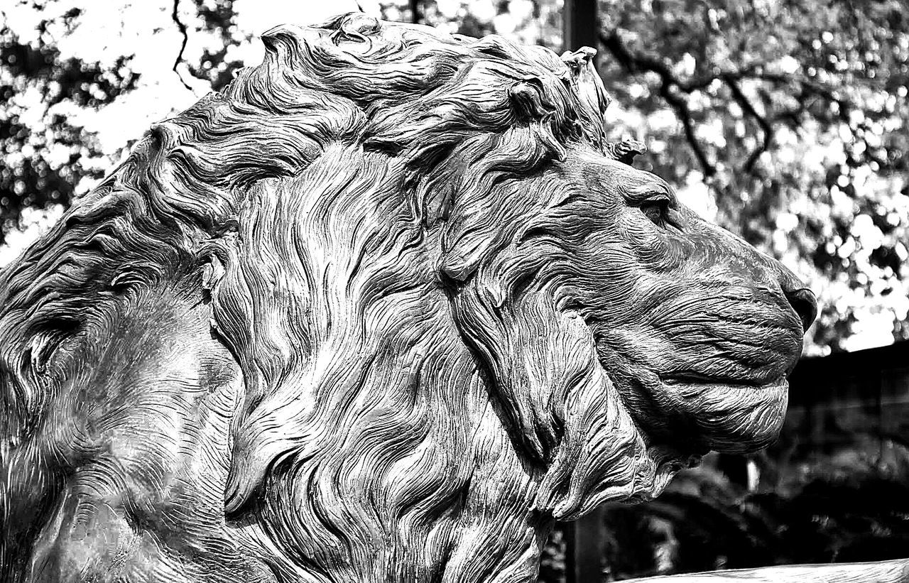 Low Angle View Of An Animal Statue