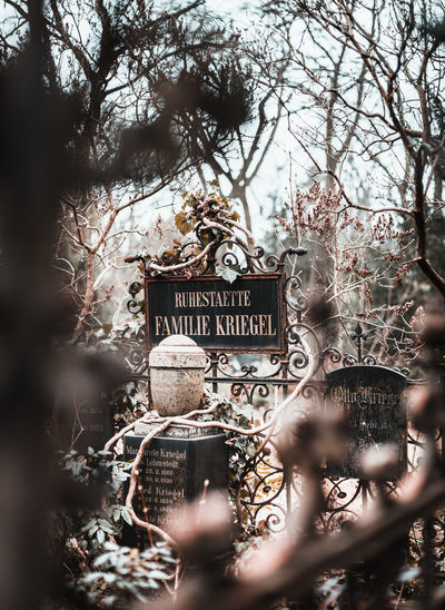 Friedhöfe vor dem Halleschen Tor. Winter Graveyard Friedhof Friedhöfe Am Mehringdamm Hallesches Tor Berlin Abschied Death Trauer Grab Grabstein Gravestone Grave Engel Angel Berliner Ansichten Kreuzberg Gedenken Verlust Historisch