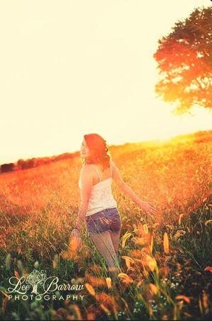 Nature Sunset Beauty