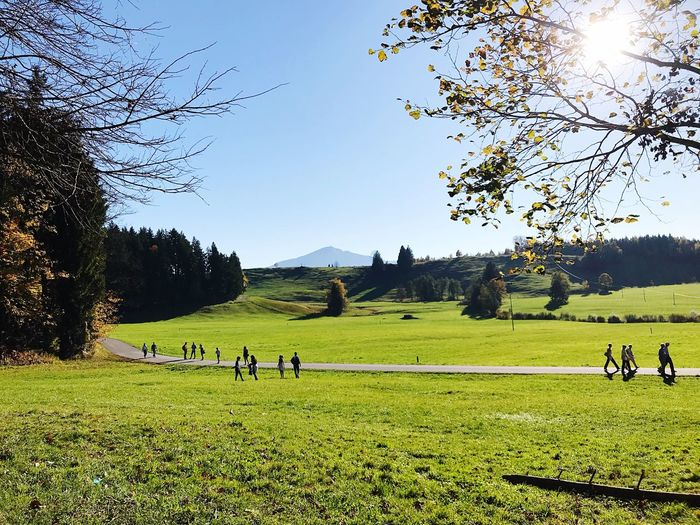 Lost In The Landscape Grass Tree Field Growth Green Color Nature Landscape Real People Sky Day Tranquility Large Group Of People Outdoors Leisure Activity Beauty In Nature Sport Clear Sky Zugerberg Switzerland Mountain