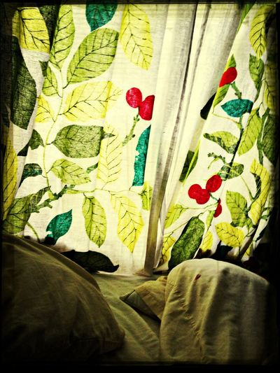 Laying In Bed Sun_collection Autumn