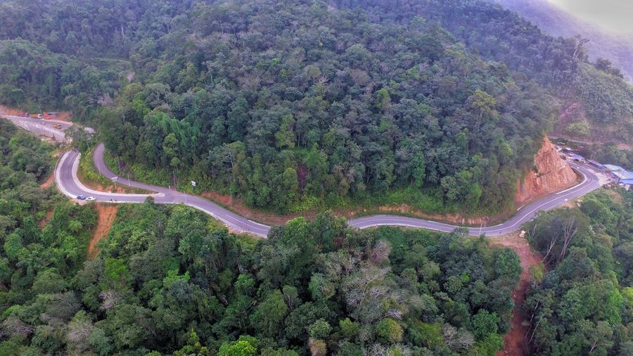 Tree Winding Road Road Aerial View Mountain High Angle View Rural Scene Landscape Drone  Empty Road