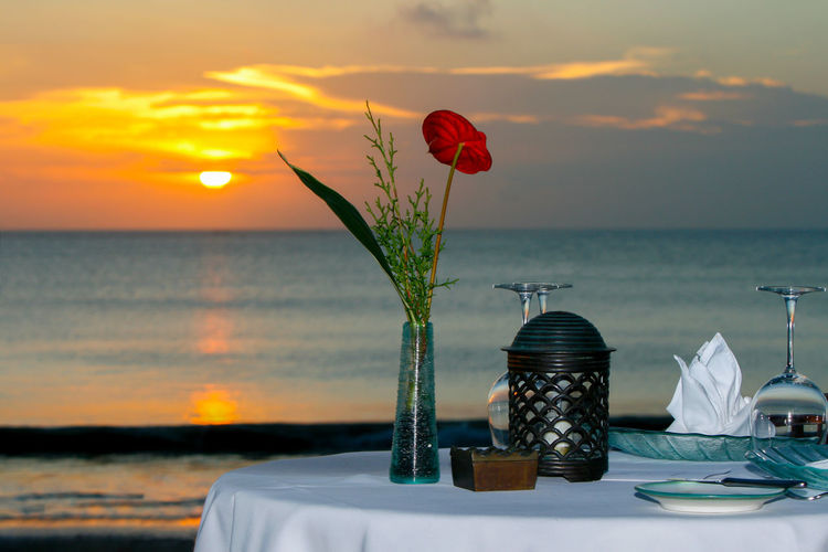 Beauty In Nature Flower Horizon Over Water Nature No People Outdoors Sea Sunset Wine Not