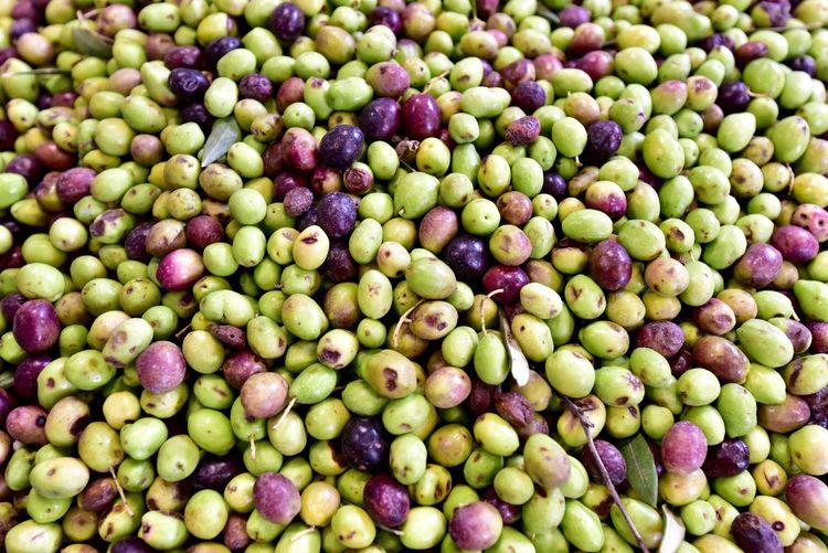 olive Olive オリーブ Food Food And Drink Healthy Eating Full Frame Freshness Backgrounds Abundance Large Group Of Objects Green Color Wellbeing Fruit High Angle View No People Still Life Market For Sale Close-up Day Market Stall Retail