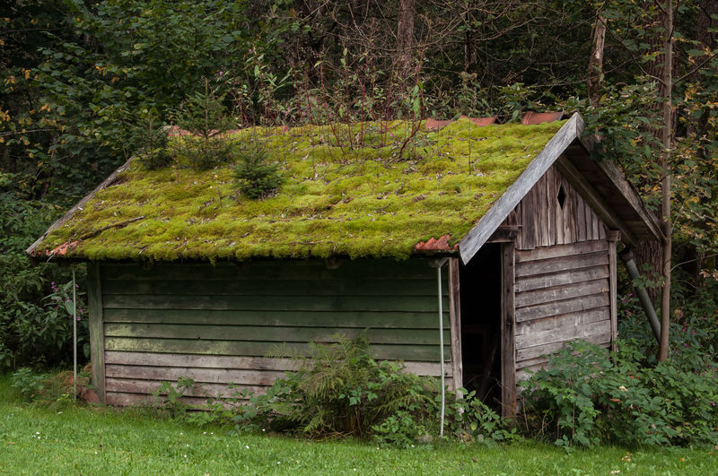 Built Structure Green Color No People Architecture Day Tree Outdoors Building Exterior GrassGrass Beauty In Nature Growth Plant Nature EyeEmNewHere Countryside Views Nature Bayerischer Wald Bayrischer Wald Germany Hut Cottage Forrest Forrest House Forrest Scene