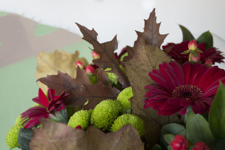 Leaf Plant Part Plant Beauty In Nature Nature Close-up Bunch Bunch Of Flowers Flower Red Green Autumn Floral Composition Fall Romantic Love Wedding Bouquet Green Color Flower Head Flowering Plant Petal