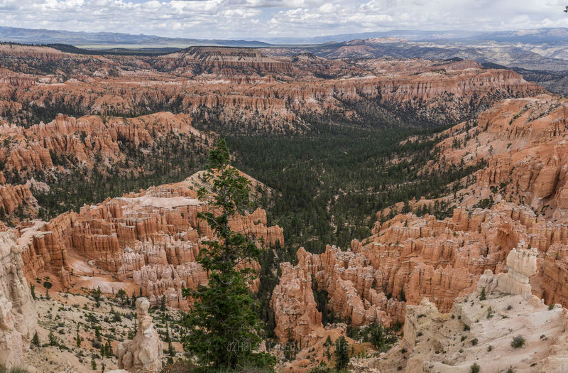 Bryce Canyon, Utah Bryce Canyon Landscape Photography National Park Nikon D750 Nikon Photography Perspective On Nature Red Rock Utah Beauty In Nature Birds Eye View Day Landscape Mountain Nature Outdoors Scenics Sky Tree