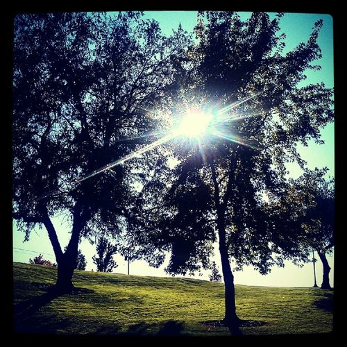 A few summer ago in Valley Mission Park. (: Relaxing BetweenTheTrees Sun