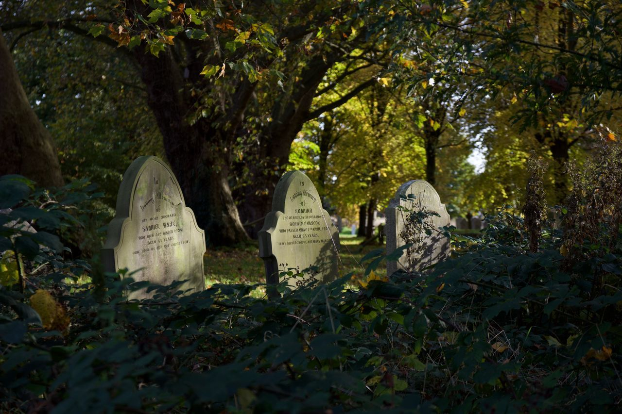 View Of Graveyard During Autumn