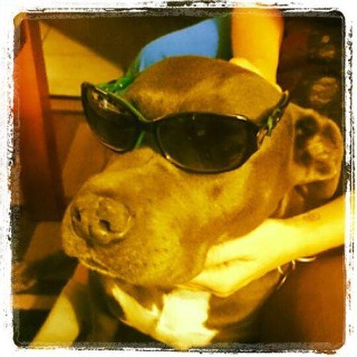 His cool 😎 am I? Jewelz JBegaye 💟