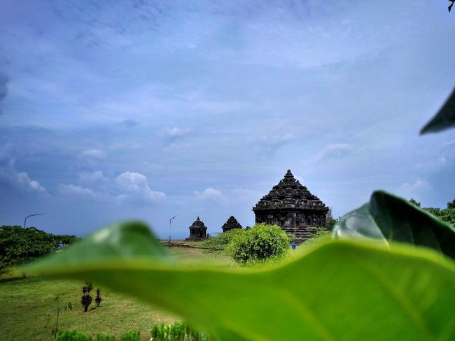 Indonesian Culture Architecture History Built Structure Religion Ancient Travel Destinations Outdoors Building Exterior Nature Ancient Civilization No People Sky Day