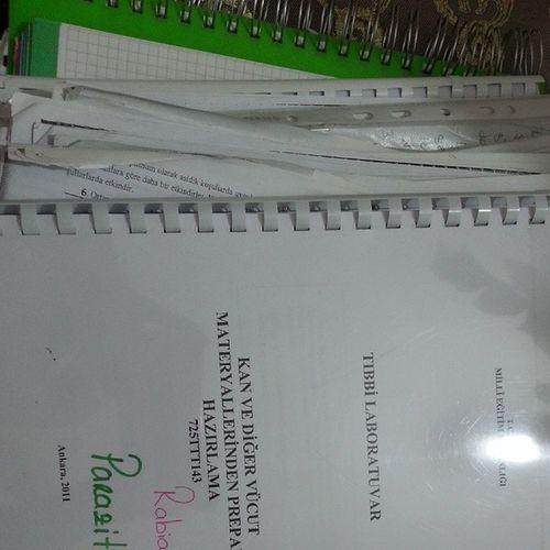 Ders çalışmak Istemiyorum Kahrolsun beceri eğitimi sınavı