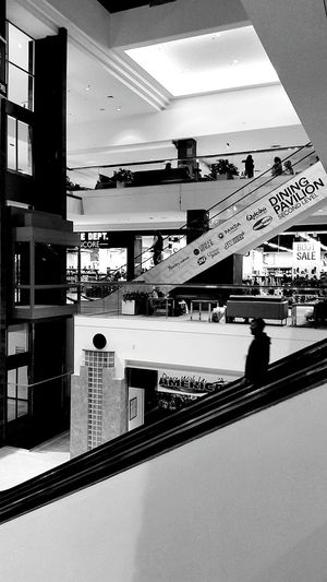 Chance Encounters Shopping Mall Futuristic Architecture Choice Human Representation Embrace Urban Life Low Angle View First Eyeem Photo Full Frame Large Group Of Objects Beautifully Organized Allways Chears Me Up . Full Length All Respect For Any Woman Always Be Cozy Close-up Silhouette High Angle View Arts Culture And Entertainment Performance Togetherness Enjoy The New Normal Dark Built Structure