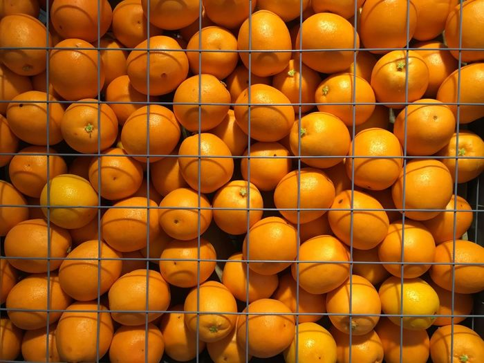 Close-up of oranges on display