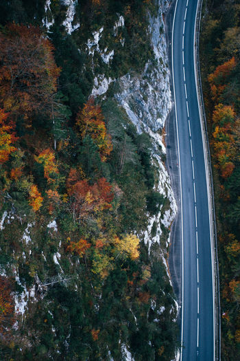 High angle view of bridge amidst trees during autumn