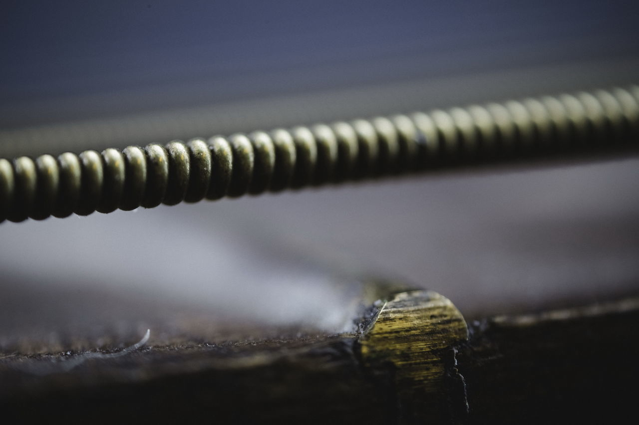 close-up, macro photography, no people, selective focus, nature, metal, focus on foreground, animal themes, water