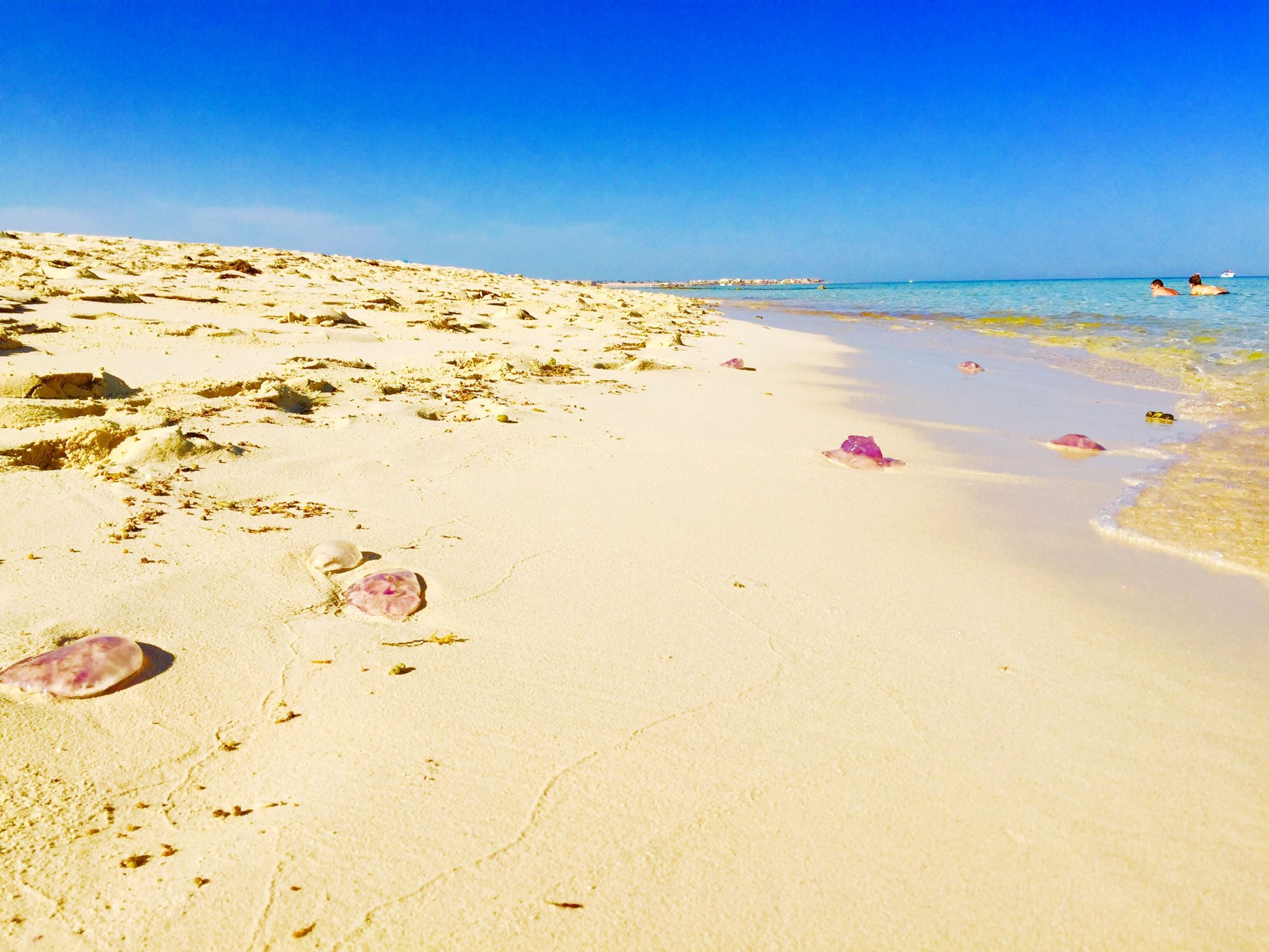 beach, clear sky, sand, sea, copy space, shore, blue, horizon over water, water, tranquility, tranquil scene, scenics, beauty in nature, coastline, nature, summer, sunlight, incidental people, vacations, footprint