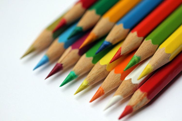 Close-up of colored pencils on white background