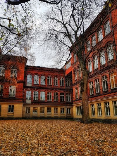 nature house. Streetphotography Stockholm Building Nature Autumn Leaves Colour Your Horizn Architecture Built Structure Window Low Angle View Building Exterior Day No People Outdoors