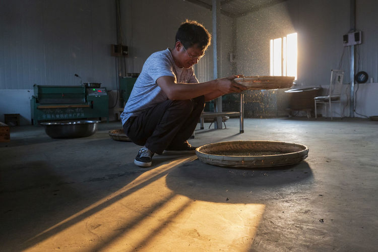 Yiliang, China - March 24, 2019: Man working in a tea laboratory selecting the best tea leaves for processing Yiliang Kunming, China Tea Tea Leaves Tea Harvesting Yi Minority Ethnic Group China ASIA Tea Garden Tea Production Tea Processing Puer Tea Oolong Tea