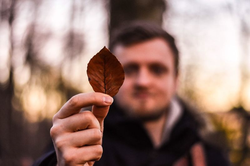 Close-Up Of Man Holding Autumn Leaf